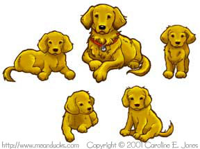 Golden Retriever Designs